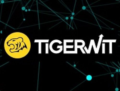 Tigerwit Forex Broker – Complete Review