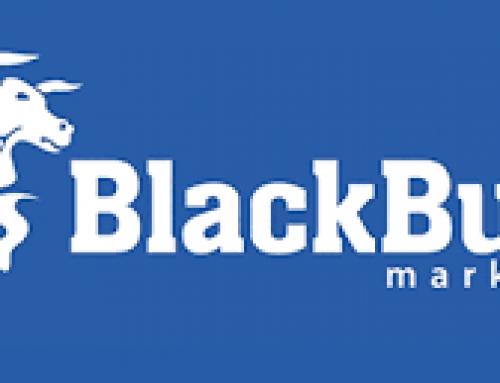 BlackBull Markets Broker Review 2020 – Regulated ECN Broker from New Zealand